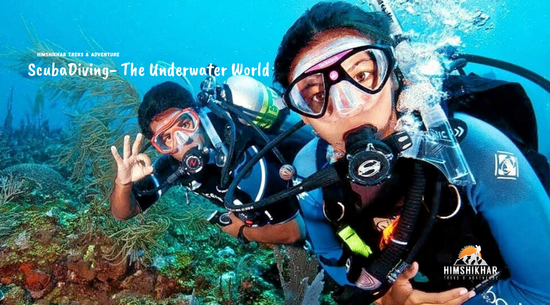 Scuba, Scuba Diving, Scuba Diving Rajkot, Scuba Diving Ahmedabad, Scuba Diving Surat, Scuba Diving Vadodara Scuba Diving Gujarat, Scuba Diving Company Gujarat, Scuba Diving Company Rajkot, Best Scuba Diving Company, Holiday, Picnic.